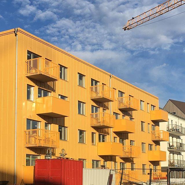 Gult är fint. Under uppförande. Rosendal, Uppsala. #uppsala #rosendal #gul #gult #yellow #bostad #bostäder #residential #arkitektur #architecture #stadsutveckling #blueskies #beautiful #belatchew